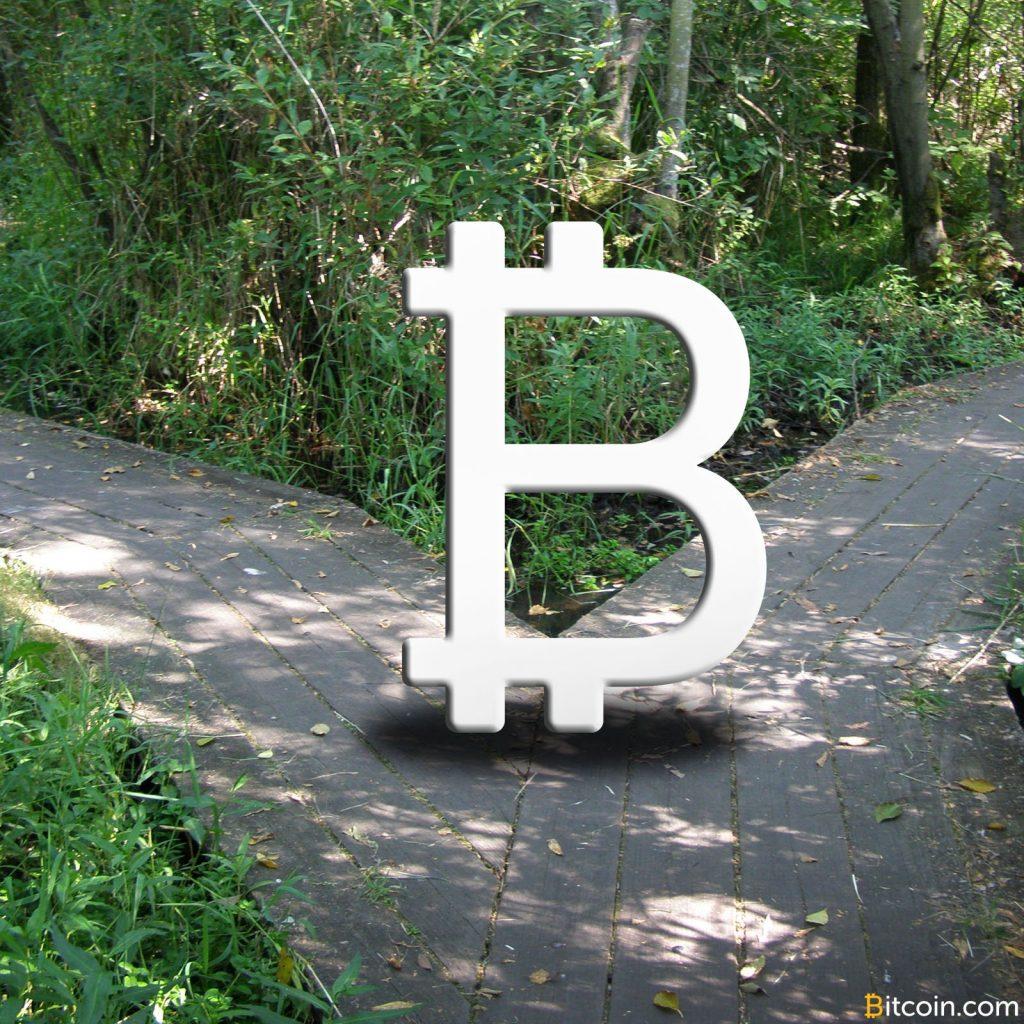 仮想通貨分裂